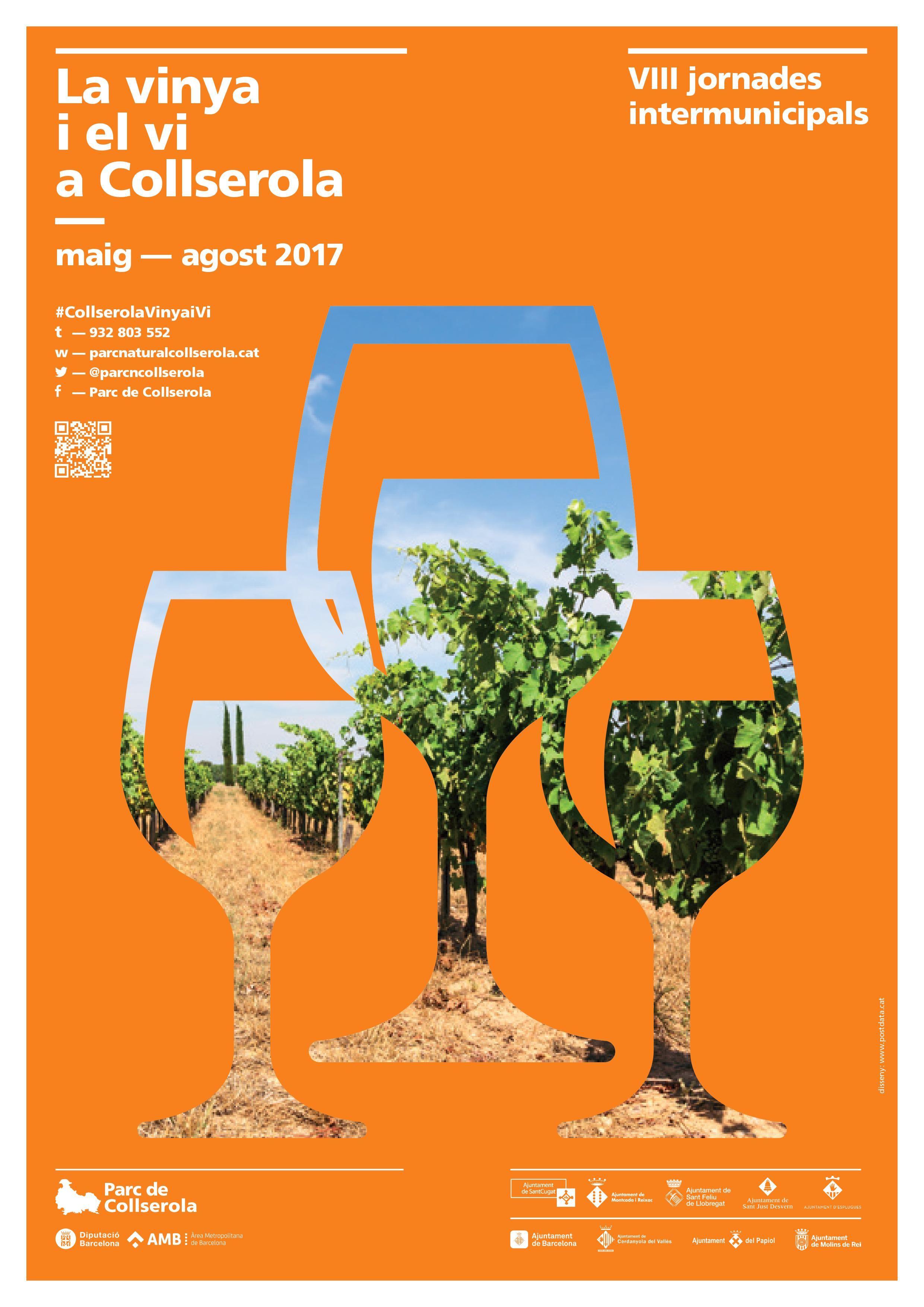 Imatge de les activitats del programa la vinya i el vi