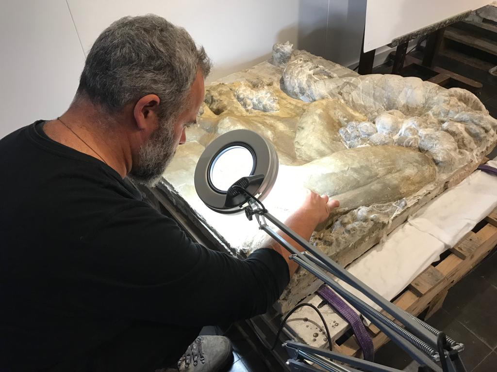 L'especialista Jérôme Rouch restaura els relleus