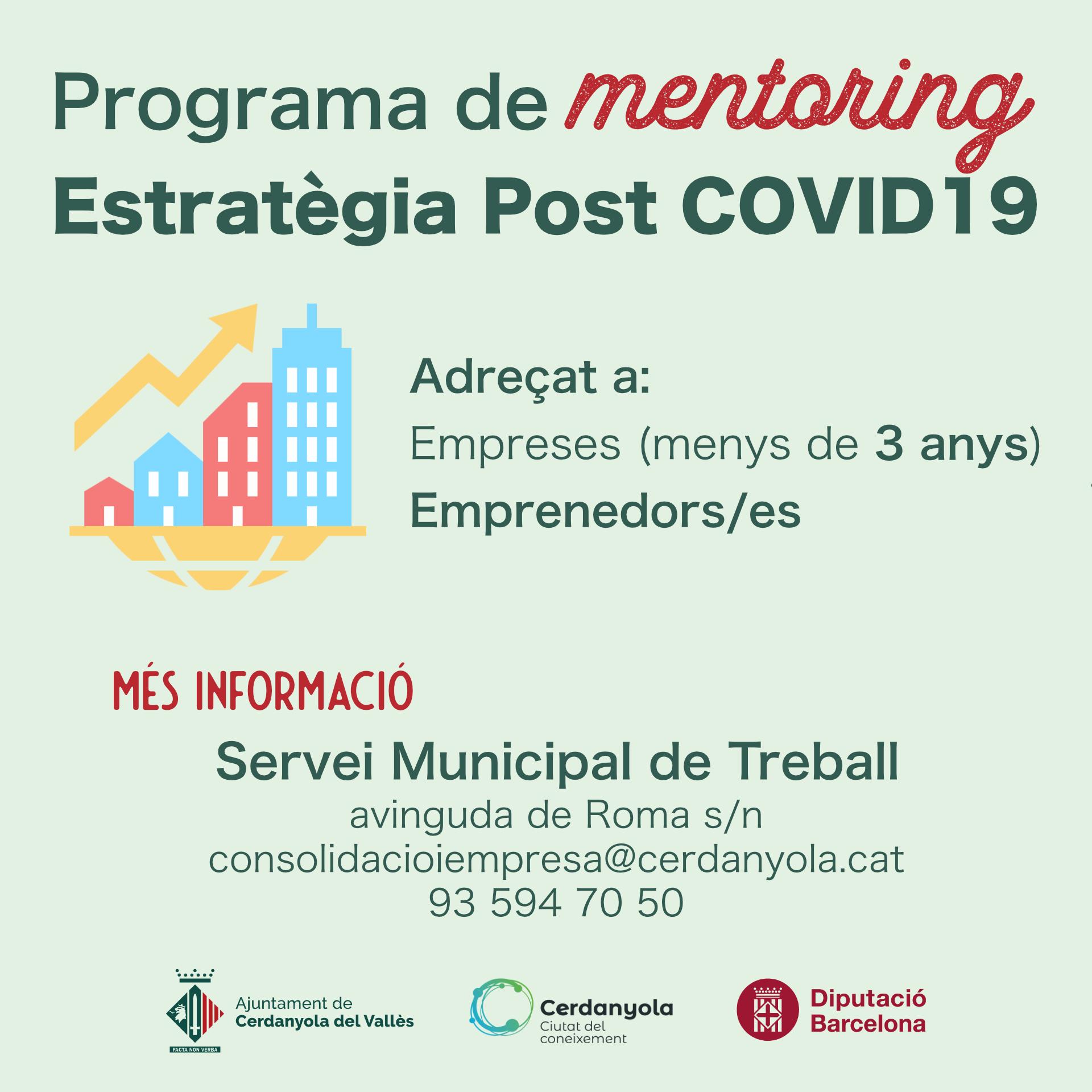 Imatge Programa mentoring 'Estratègies post covid19'