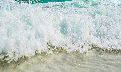 III Concurs fotogràfic 'Mostra'ns el teu estiu'