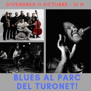 Blues al Parc del Turonet