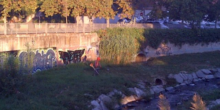 Operari treballant en el desbrossament i neteja del riu Sec