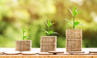 Al·legoria al creixement dels diners i les plantes