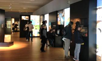 Exposició Cerdanyola, terra d'ibers