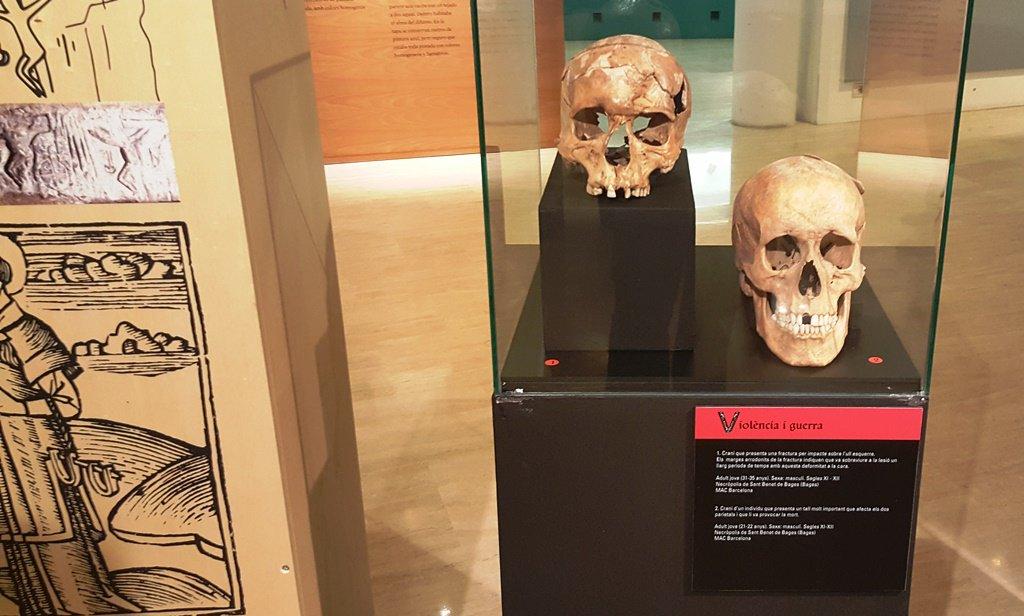 Fotografia de la mostra