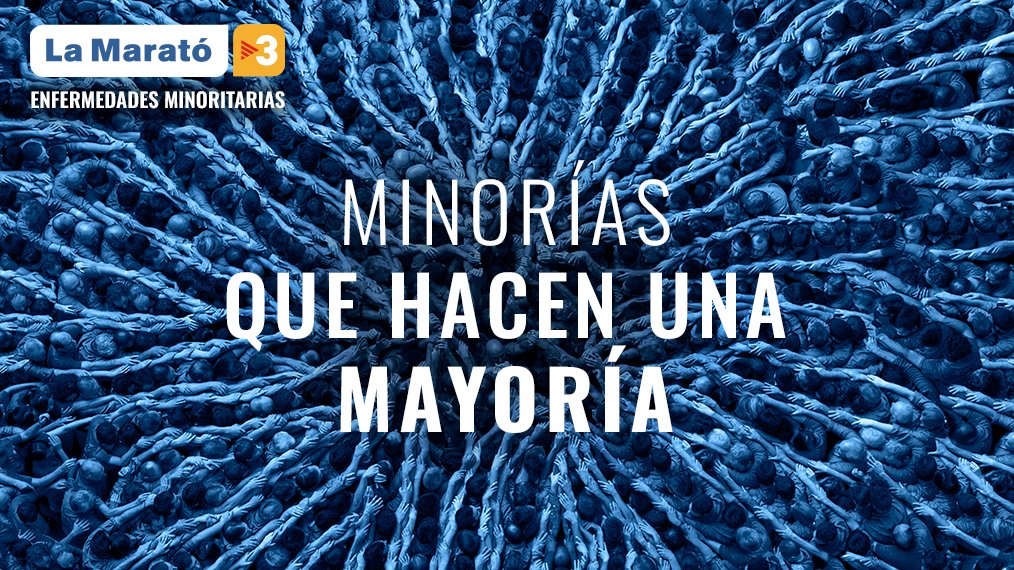 Imatge de La Marató de TV3 2019