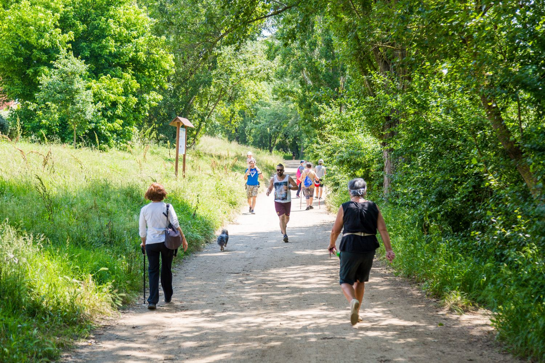 L'afluència de persones al parc ha augmentat els darrers mesos Foto: Núria Puentes