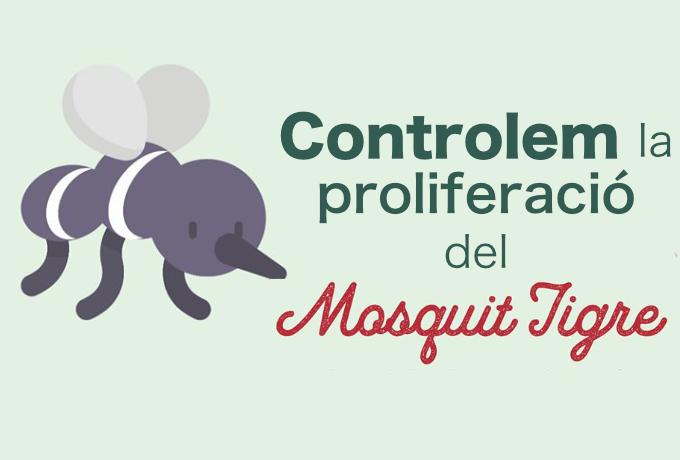 Imatge control proliferació Mosquit Tigre