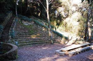 Imatge del Bosc Gran de Can Catà