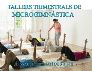 Taller intensiu microgimnàstica