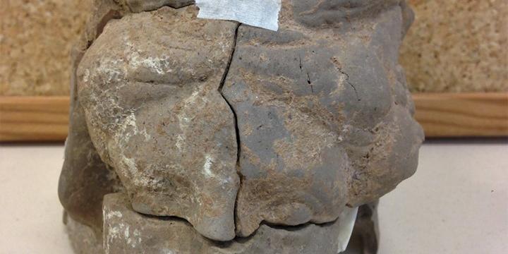 Imatge del timateri