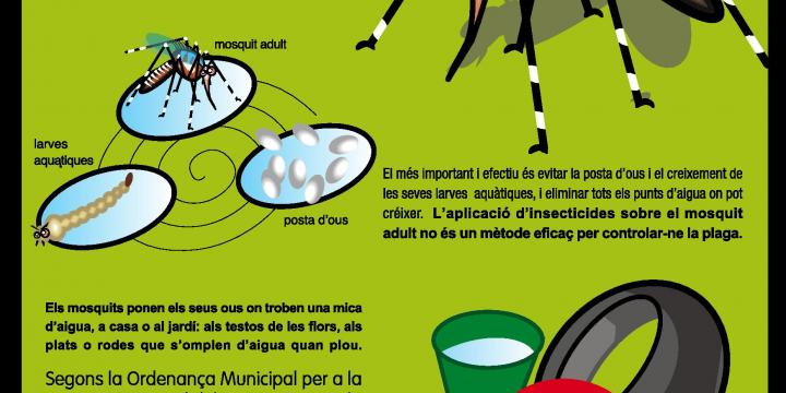 Cartell de la campanya del mosquit tigre