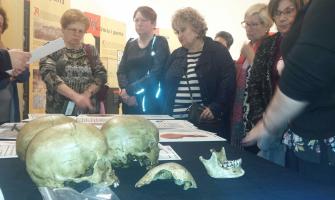 Un moment de la visita a l'exposició 'Ossos'