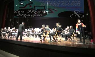 Concert de l'alumnat d'Aulos